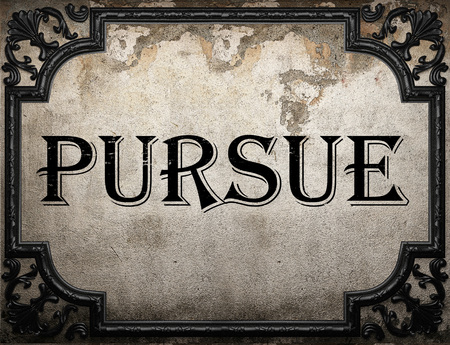 pursue: pursue word on concrette wall