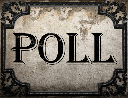 poll: poll word on concrette wall
