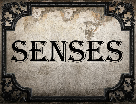 senses: senses word on concrette wall