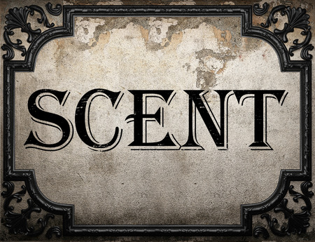 scent: scent word on concrette wall