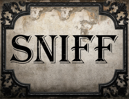 sniff: sniff word on concrette wall Stock Photo