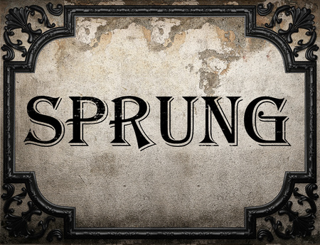 sprung: sprung word on concrette wall