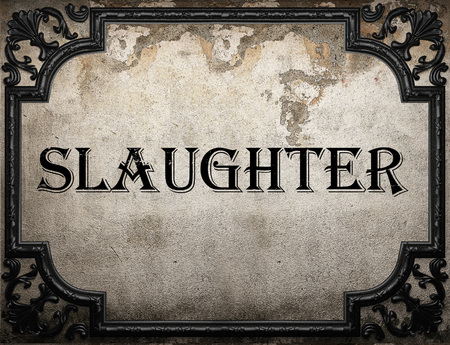 slaughter: slaughter word on concrette wall Stock Photo