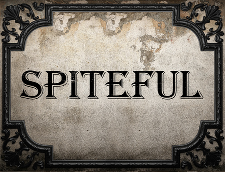 spiteful: spiteful word on concrette wall