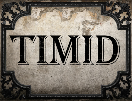 timid: timid word on concrette wall