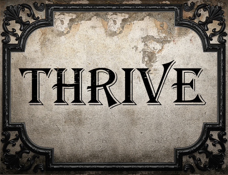 to thrive: thrive word on concrete wall Stock Photo