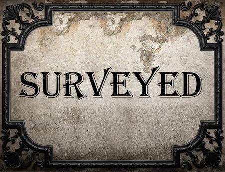 surveyed: surveyed word on concrete wall Stock Photo