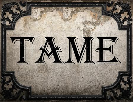 tame: tame word on concrete wall Stock Photo