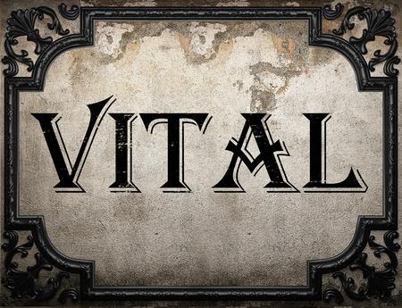 vital: vital word on concrete wall
