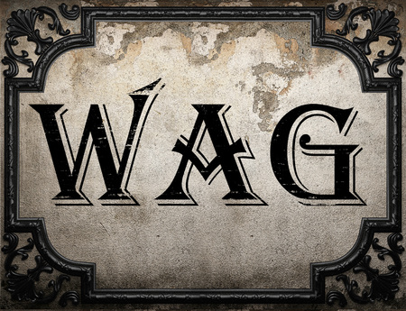 wag: wag word on concrete wall Stock Photo