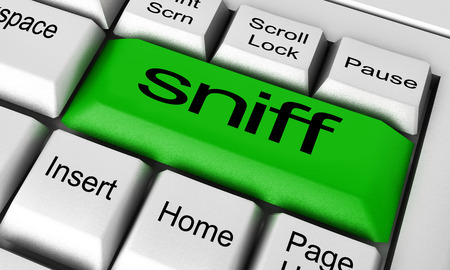 sniff: sniff word on keyboard button Stock Photo