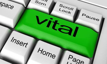 vital: vital word on keyboard button Stock Photo