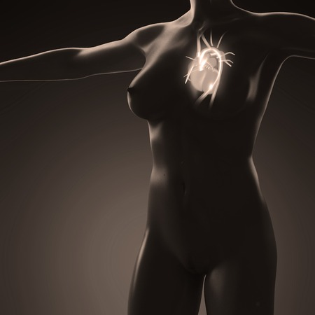 frontal: science anatomy of human body with glow heart
