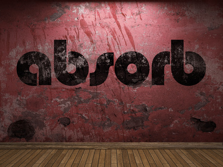 absorb: absorb word on red wall Stock Photo