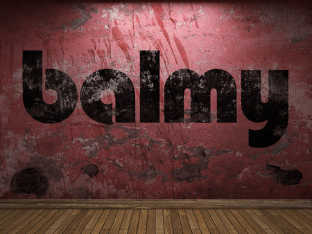 balmy: balmy word on red wall