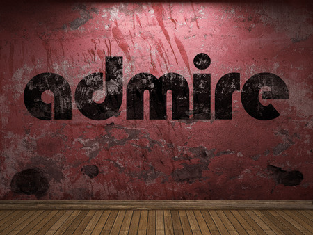 admire: admire word on red wall Stock Photo