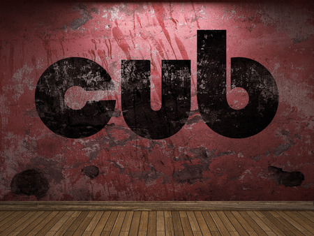 cub: cub word on red wall
