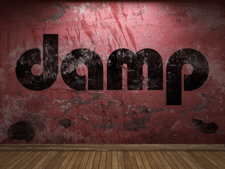 damp: damp word on red wall