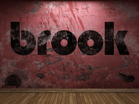 brook: brook word on red wall