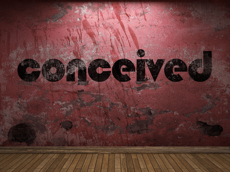 conceived: conceived word on red wall