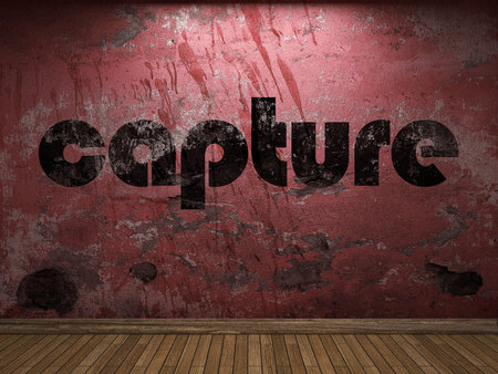 capture: capture word on red wall Stock Photo
