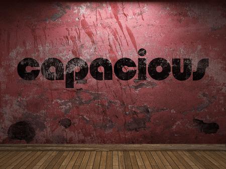capacious: capacious word on red wall
