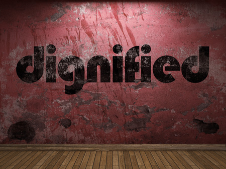 dignified: dignified word on red wall Stock Photo