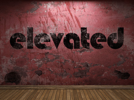 elevated: elevated word on red wall