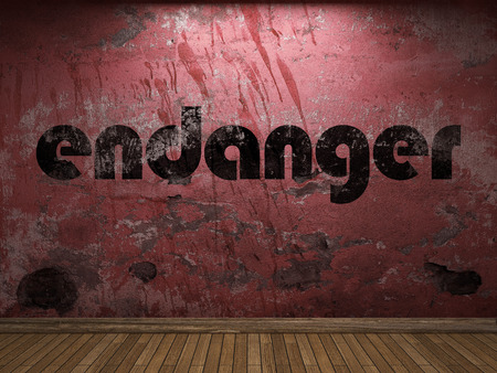 endanger: endanger word on red wall