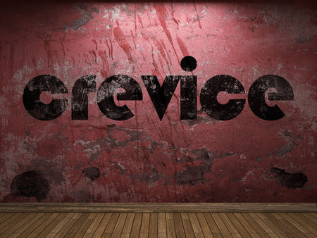 crevice: crevice word on red wall