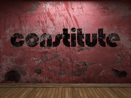 constitute: constitute word on red wall