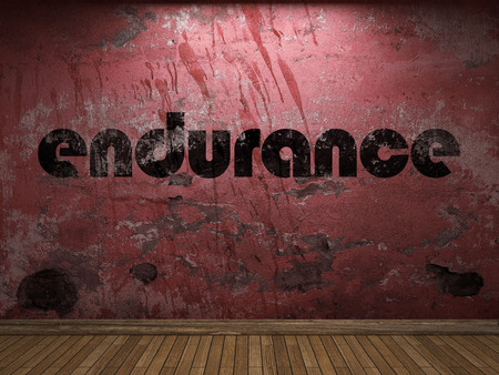 endurance: endurance word on red wall Stock Photo