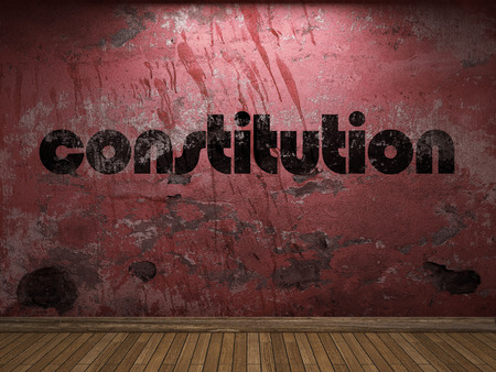 constituci�n pol�tica: palabra constituci�n en la pared roja