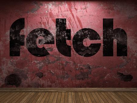 fetch: fetch word on red wall