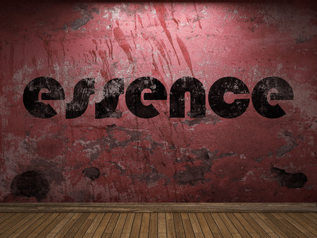 essence word on red wall