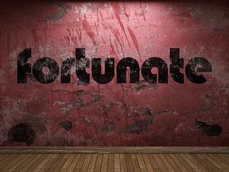 fortunate: fortunate word on red wall