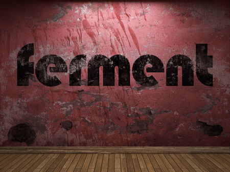 ferment: ferment word on red wall