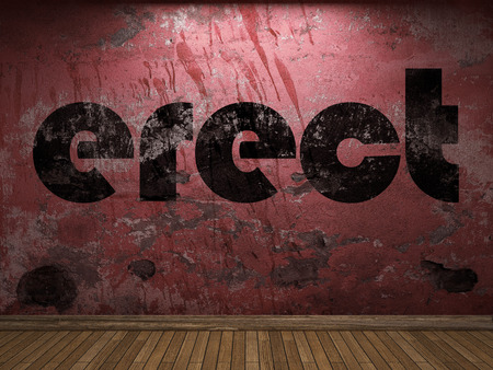 erect: erect word on red wall
