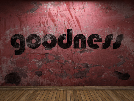 goodness: goodness word on red wall