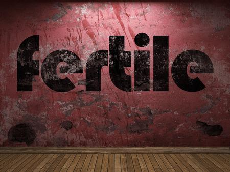 fertile: fertile word on red wall
