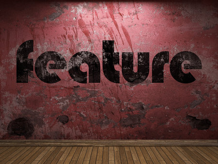 feature wall: feature word on red wall