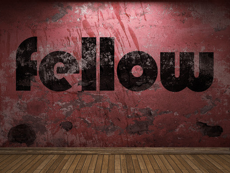 fellow: fellow word on red wall Stock Photo