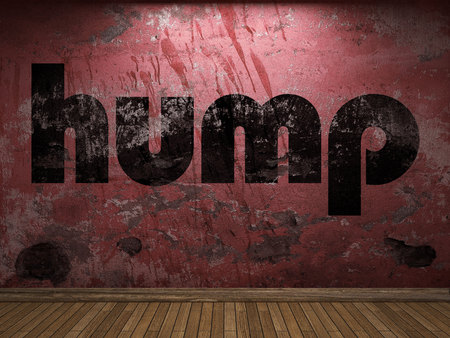 hump word on red wall Stock Photo