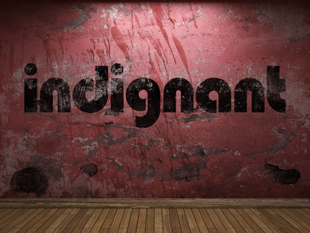 indignant: indignant word on red wall Stock Photo