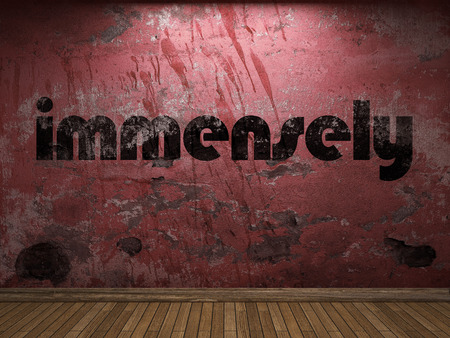 immensely: immensely word on red wall