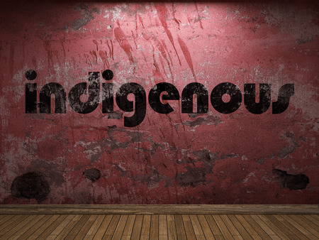 indigenous: indigenous word on red wall