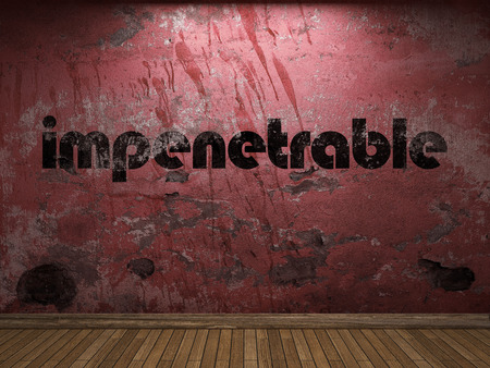 impenetrable: impenetrable word on red wall