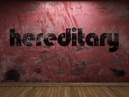 hereditary: hereditary word on red wall Stock Photo