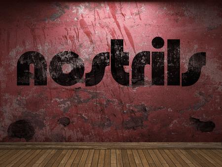 nostrils: nostrils word on red wall