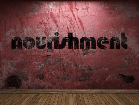 nourishment: nourishment word on red wall